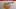 Erzurum ÖSYM Başvuru Merkezleri